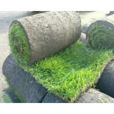 Рулонный газон (за квадратный метр свыше 200 м.к)